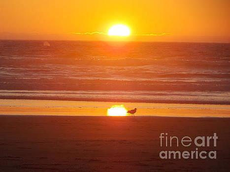Manzanita Beach Sunset by Heidi Kunkel