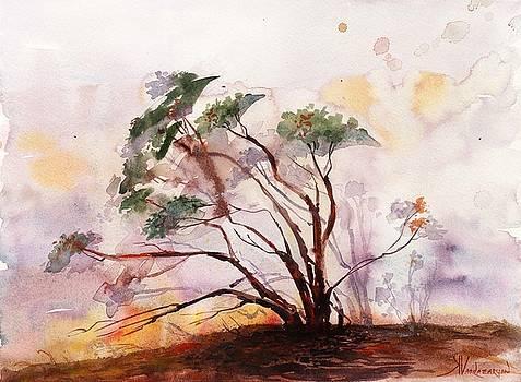 Manzanita Tree by Kristina Vardazaryan