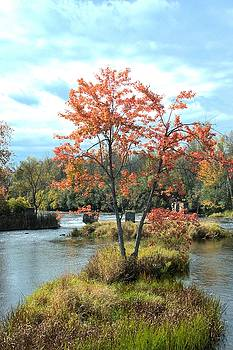Valerie Kirkwood - Maple at Andrewsville Bridge 2