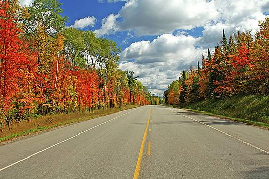 Maple Highway by Bill Morgenstern