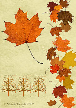 Maple Leaf by Pederbeck Arte Gruppe