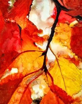 Maple by Lelia DeMello