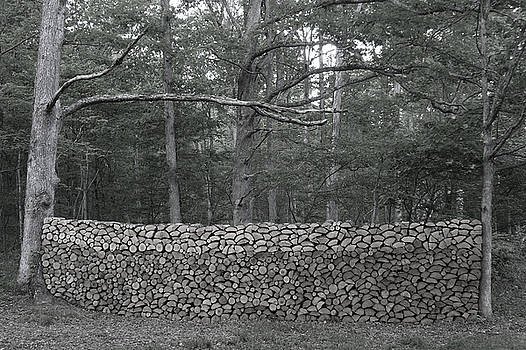 Maple Woodpile, 2015 by Mark Reep