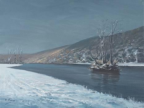 Mapledurham Winter by Richard Picton