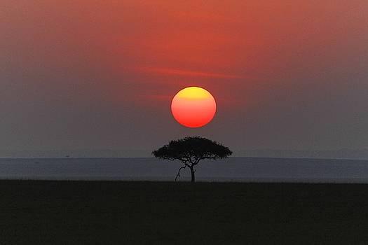 Mara sunset by Christa Niederer