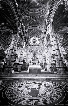 Marble Floor Siena Italy Cathedral BW by Joan Carroll