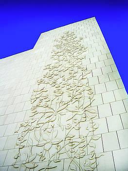 Marble Wall by Farah Faizal