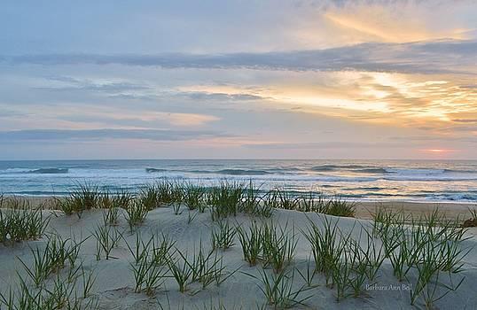 March 31, 2017 Sunrise by Barbara Ann Bell