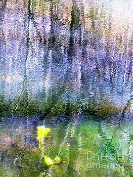 March Pond by Melissa Stoudt