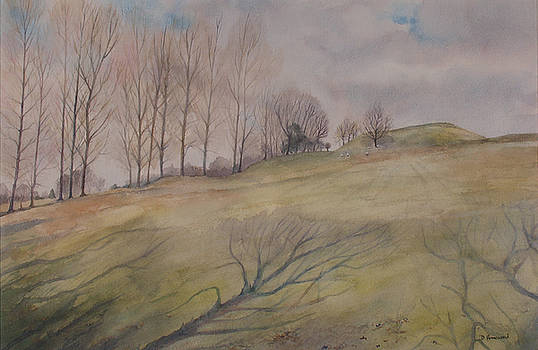 March Shadows by Debbie Homewood
