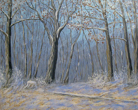 March Snow in the Woods by Matthew Hannum