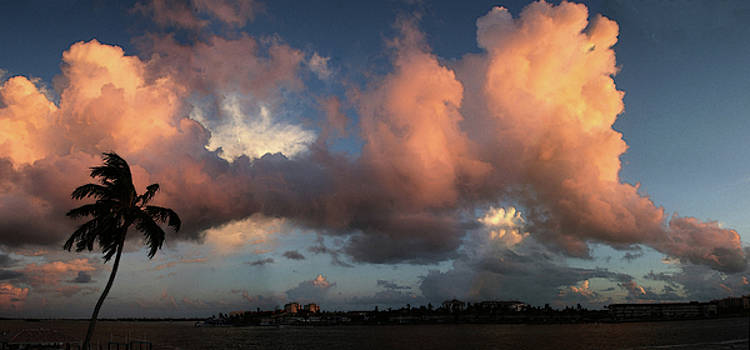 Marco Island Summer Evening by Carol Kinkead