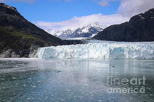 Margerie Glacier Alaska by Veronica Batterson