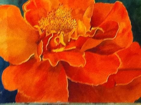 Marigold by Sandy Reese