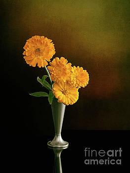 Judith Flacke - Marigolds in vase. Calendula.