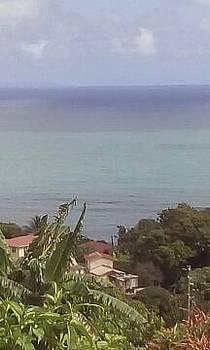 Marigot View1 by William James