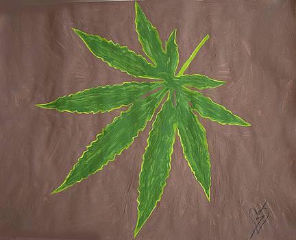 Marijuana Leaf by Stormm Bradshaw