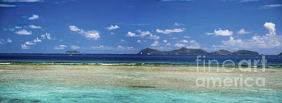 Tim Mulina - Marina Cay Reef
