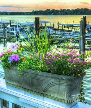 Marina Flowers by Debbi Granruth
