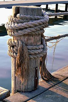 Marina Post and Ropes by Kae Cheatham