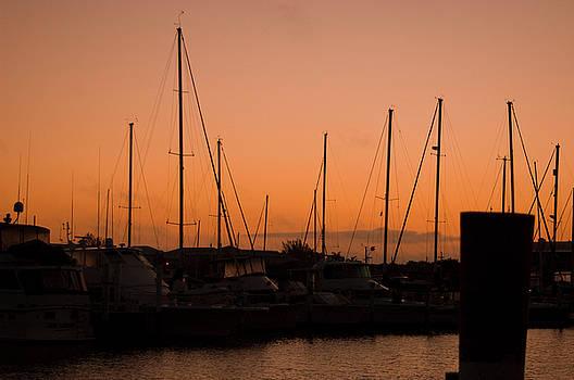 Marina Sunrise by Sheri Heckenlaible