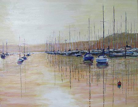 Marina Sunset by Thomas Michael Meddaugh