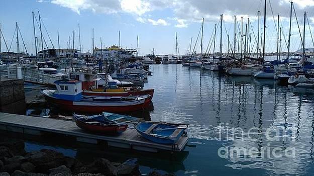 Marina  with Small Boats by Mike O'Hagan