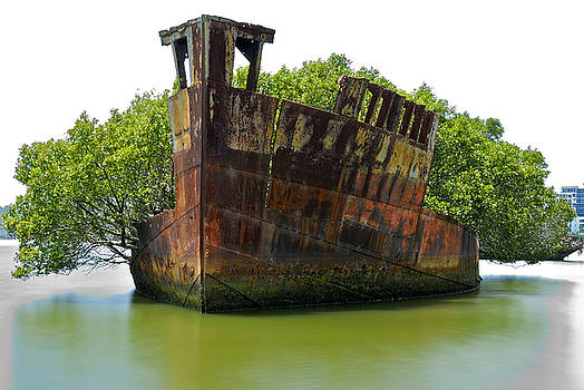 Mariner's Cove Shipwreck Homebush Bay by David Iori