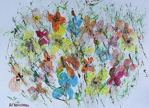 Mariposas de la Isla by Alfredo Correa