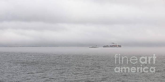 Dale Powell - Maritime Fog