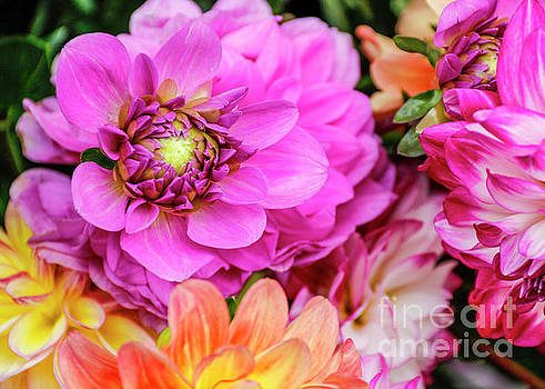Market Flowers by Linda Joyce