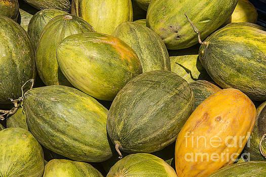 Bob Phillips - Market Melons
