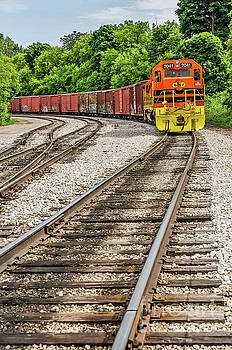 Marquette Rail Carrier by Sue Smith