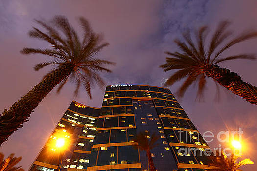 James Brunker - Marriott Hotel and Palm Trees Lima Peru