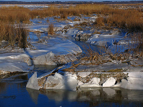 Juergen Roth - Marsh Channels on Plum Island