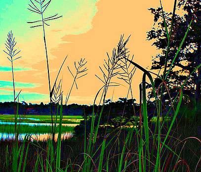 Marsh Dance by Jill Tennison