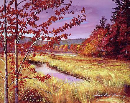Marsh Grass by David Lloyd Glover