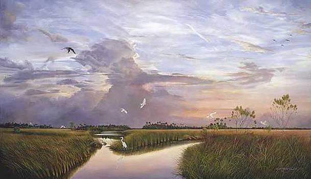 Marsh Horizon by Keith Martin Johns