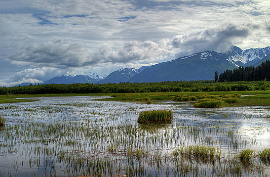 Gloria Anderson - Marsh in Alaska