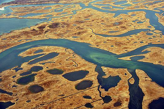 Marsh Land Ariel 2 by Dennis Clark