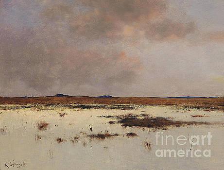 Marsh Landscape by Bela Von Spanyi