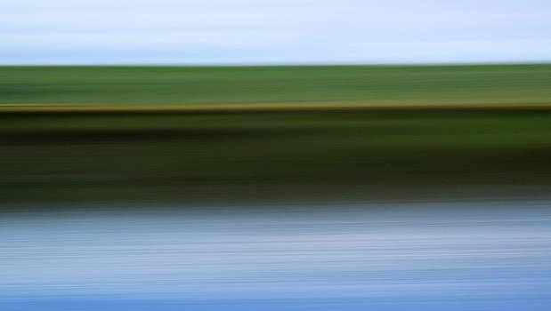 Marsh Light 1 by Claudio Bacinello