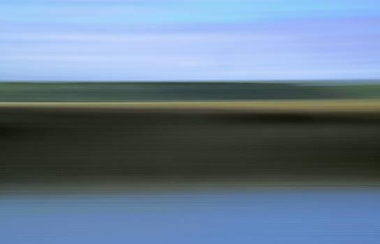 Marsh Light 2 by Claudio Bacinello