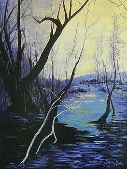 Marsh mystique by Joyce Nash