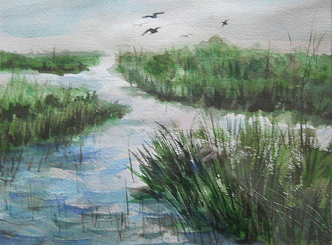 Marsh by Olga Kaczmar