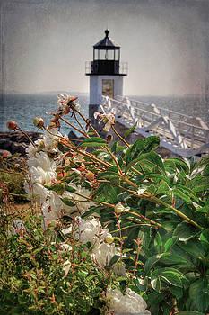 Marshall Point Light - Maine Lighthouse by Joann Vitali