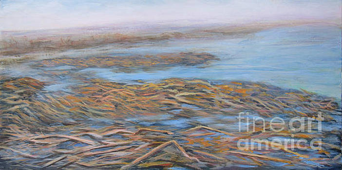 Marshes #1 by Vivian Haberfeld