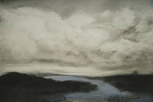Marshes by Mary Erbert