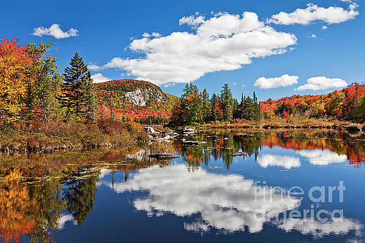 Marshfield Pond Autumn by Alan L Graham