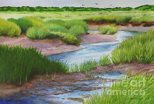 Marshside Creek by Karol Wyckoff